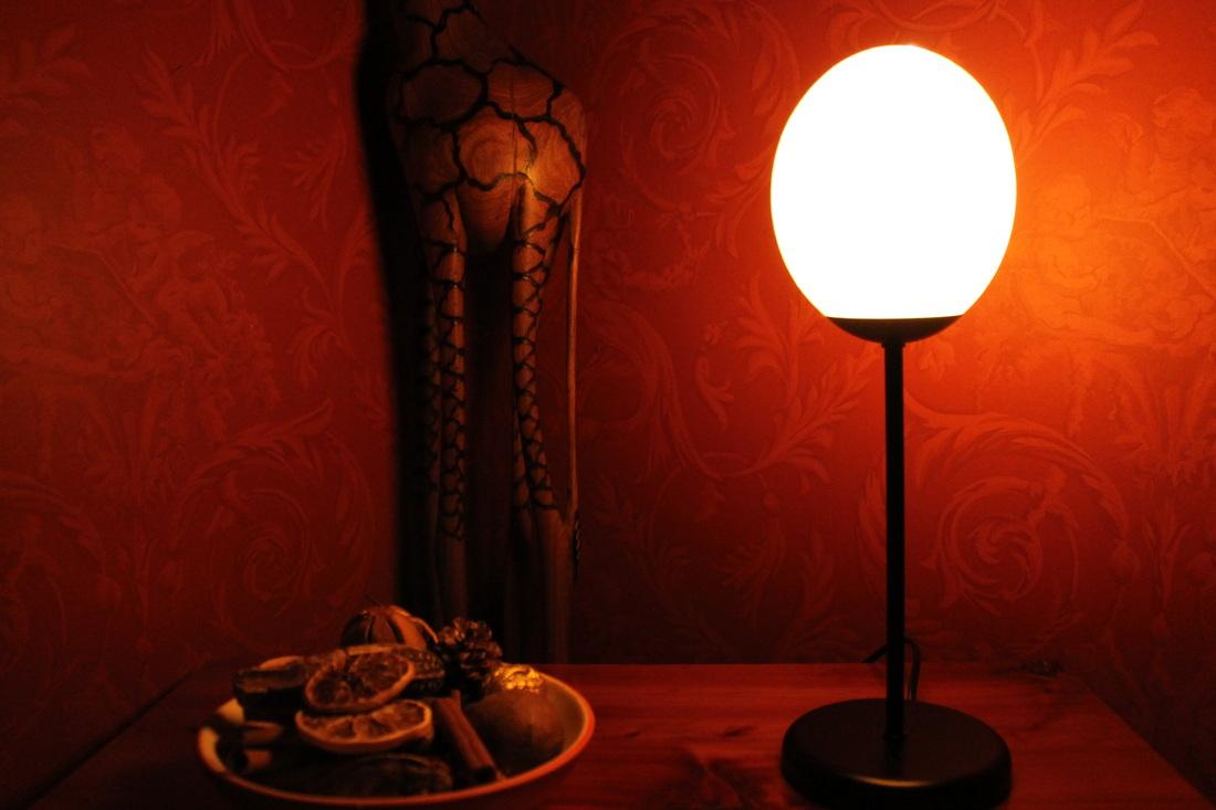 Ostrich Egg Lamps - Ostrich Art